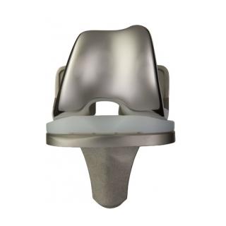 Foundation Knee System