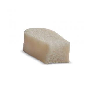 Tricortical Ilium Bone Blocks