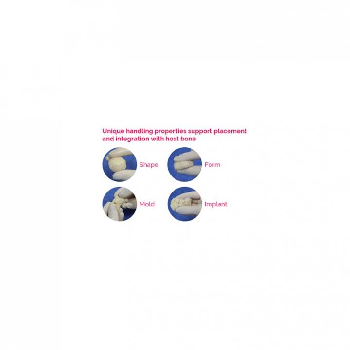 ViBone® Cryopreserved Viable Bone Matrix - slide 2