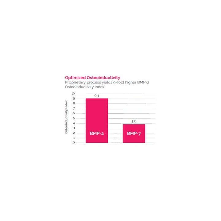 ViBone® Cryopreserved Viable Bone Matrix - slide 4